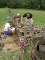 Drystone walling course photo